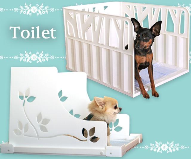 toilet_main